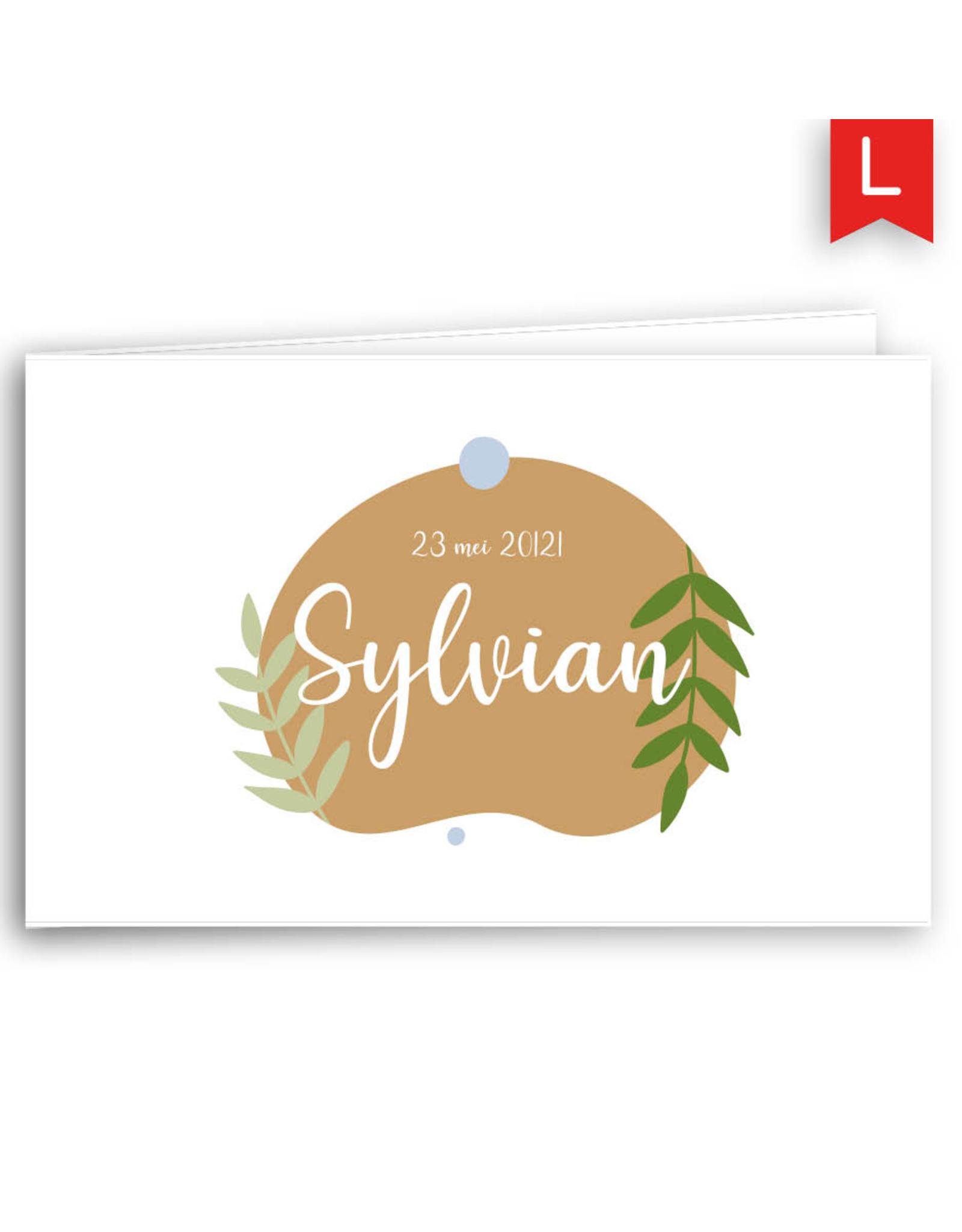 www.Robin.cards Geboortekaartje Oud Hollands gevouwen SYLVIAN
