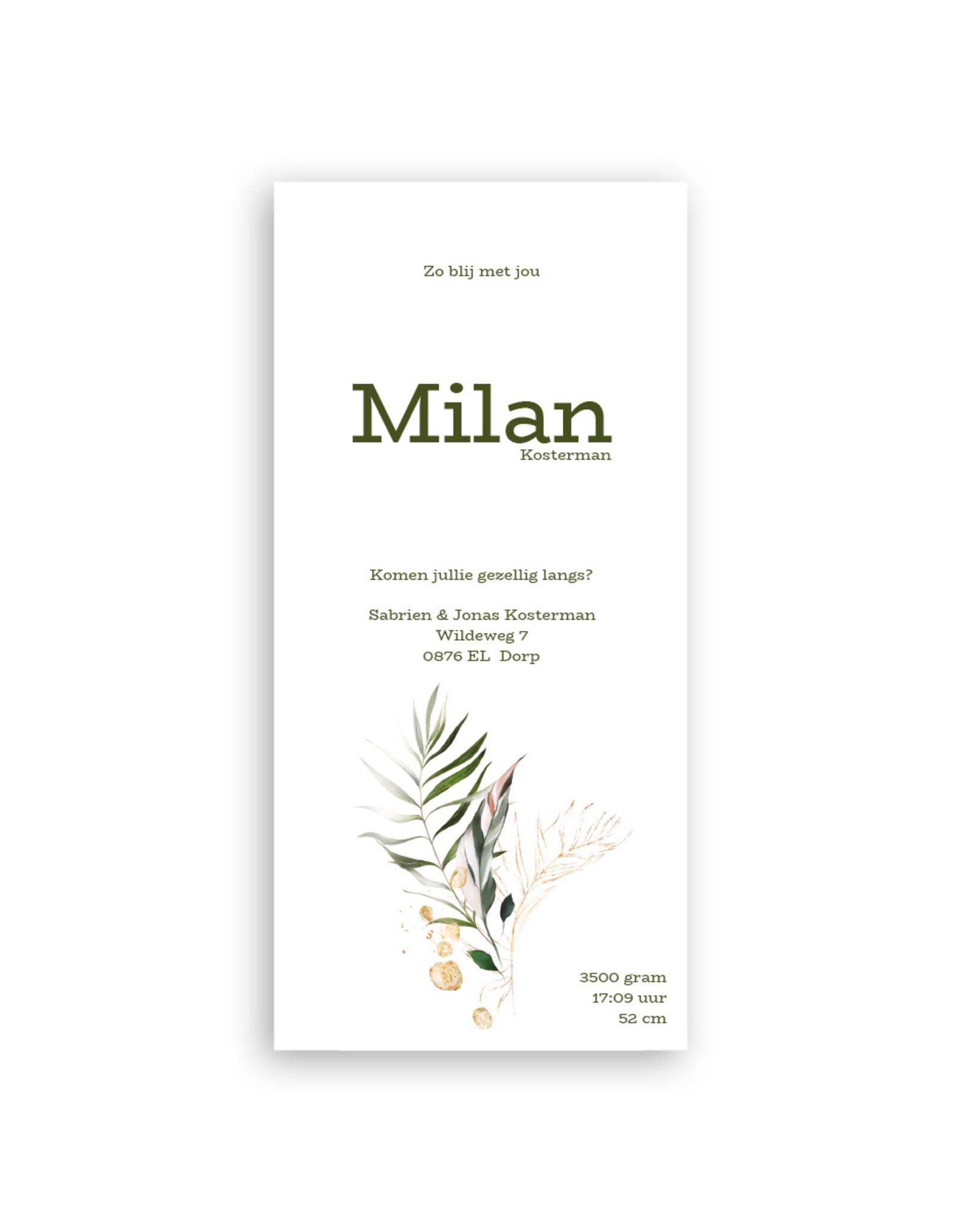 www.Robin.cards Geboortekaartje luxe enkel lang MILAN