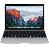Apple Apple Macbook 12 inch MLH82 Space Grey