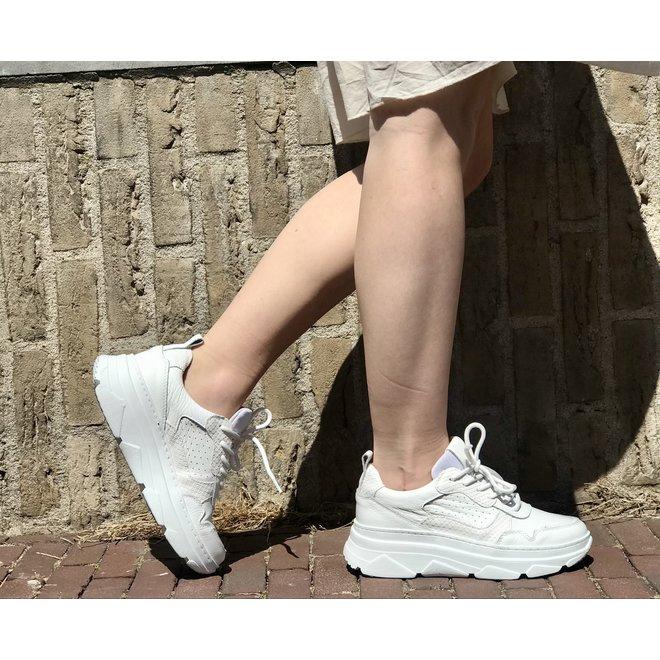 Sneaker New