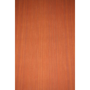 Deco Walls behang Vlies Behang | Deco Walls | Orange | 430-08