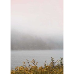 Vissevasse poster California Dreaming - Misty Morning 01