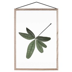 Moebe print Floating Leaves 06