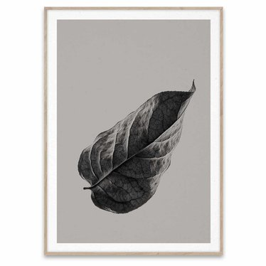 Paper Collective Poster Sabi Leaf 01