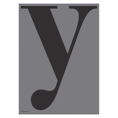 Playtype Grey poster - Y