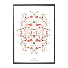 Hagedornhagen poster Speculo SP1 rose vlinders 70x100