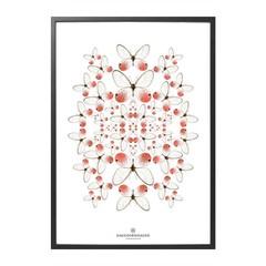 Hagedornhagen poster Speculo SP1 rose vlinders