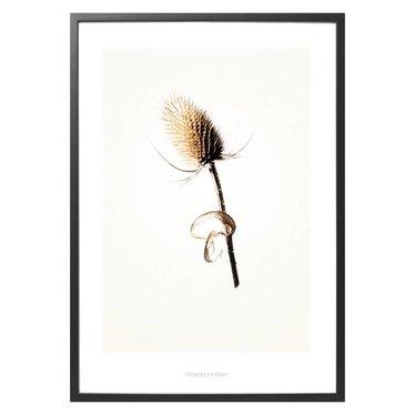 Hagedornhagen Poster Gold G3 with thistle
