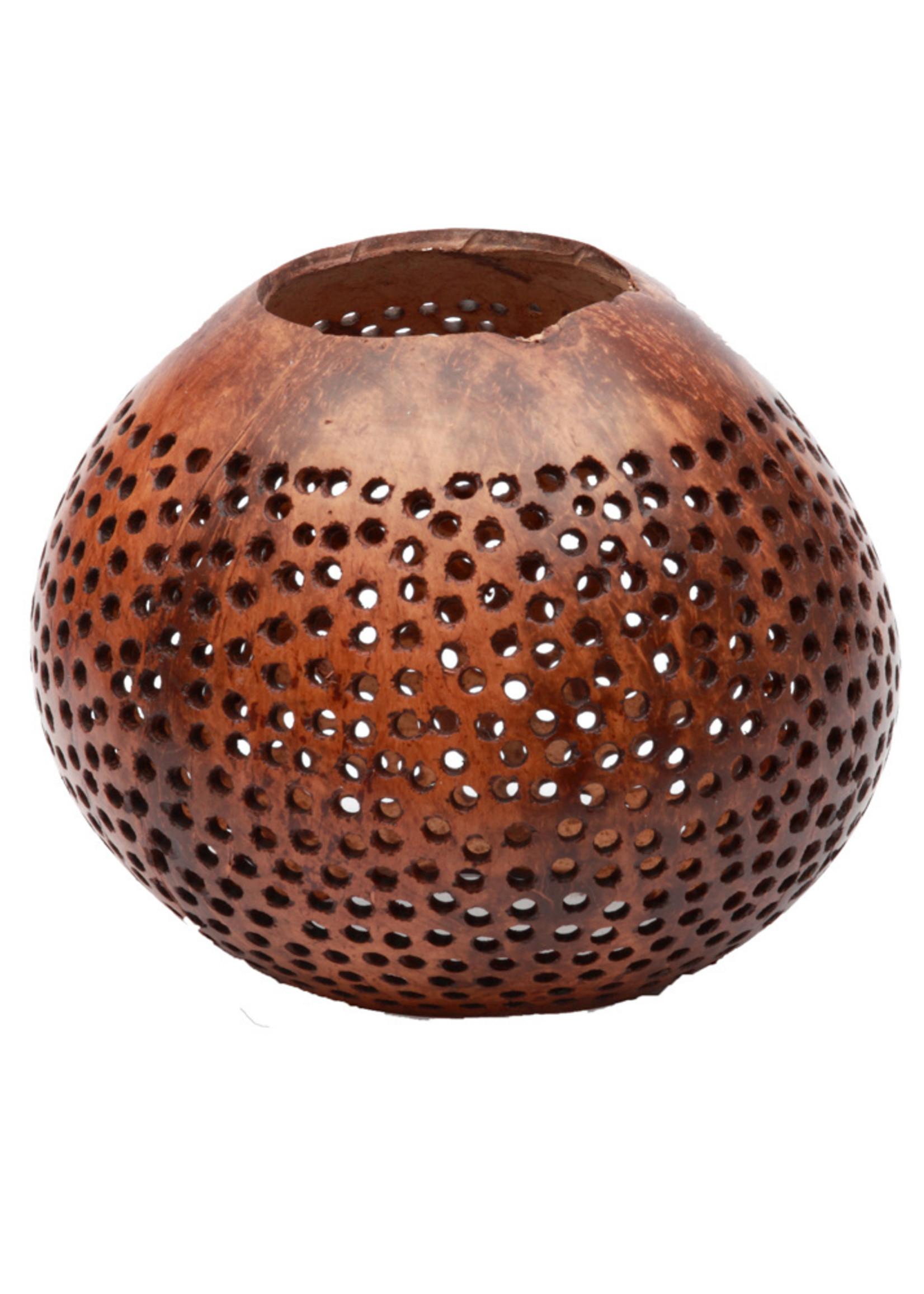 The Coconut Dot - Brown