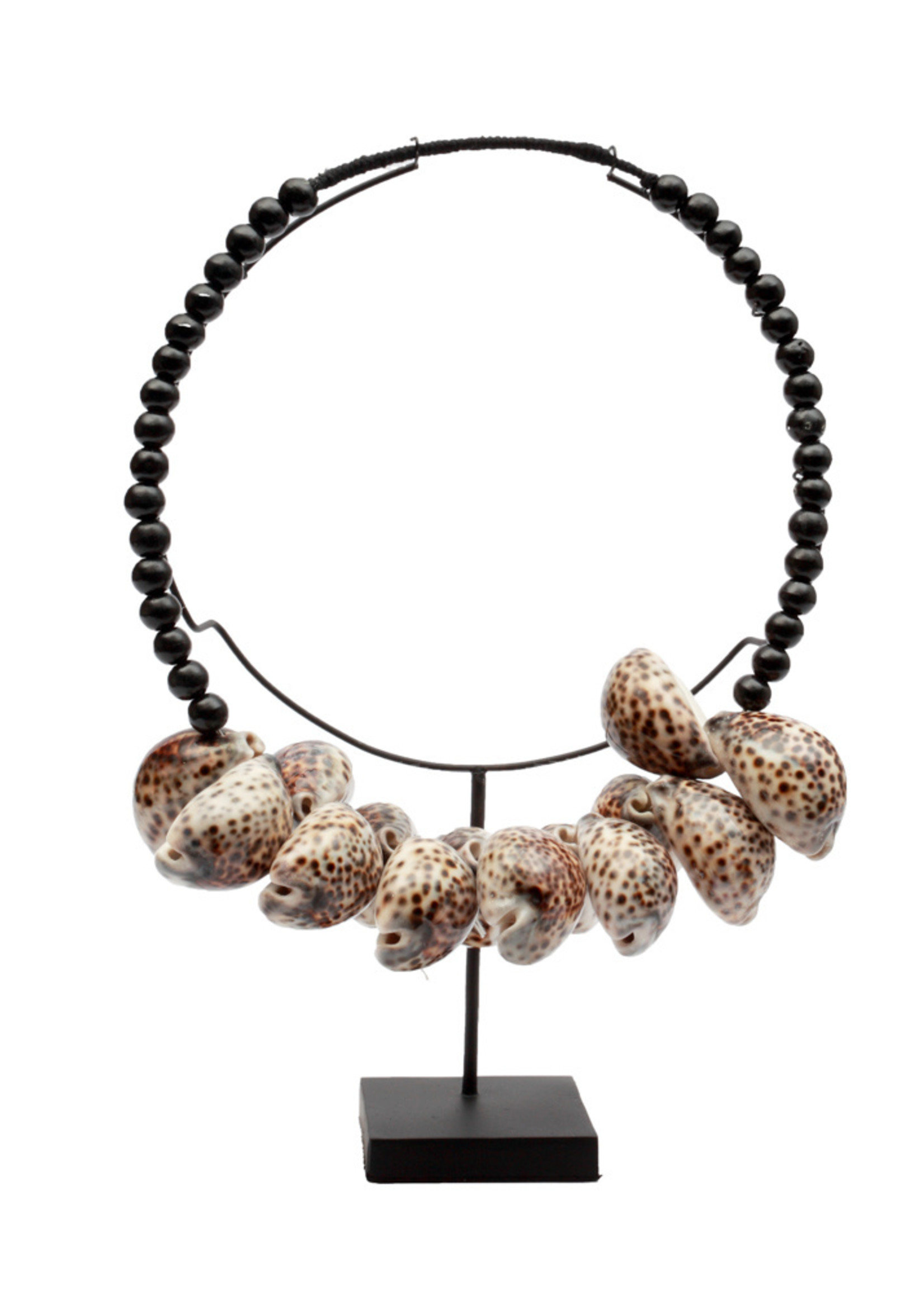 The Tiger Cowrie Necklace Black Wood on Stand