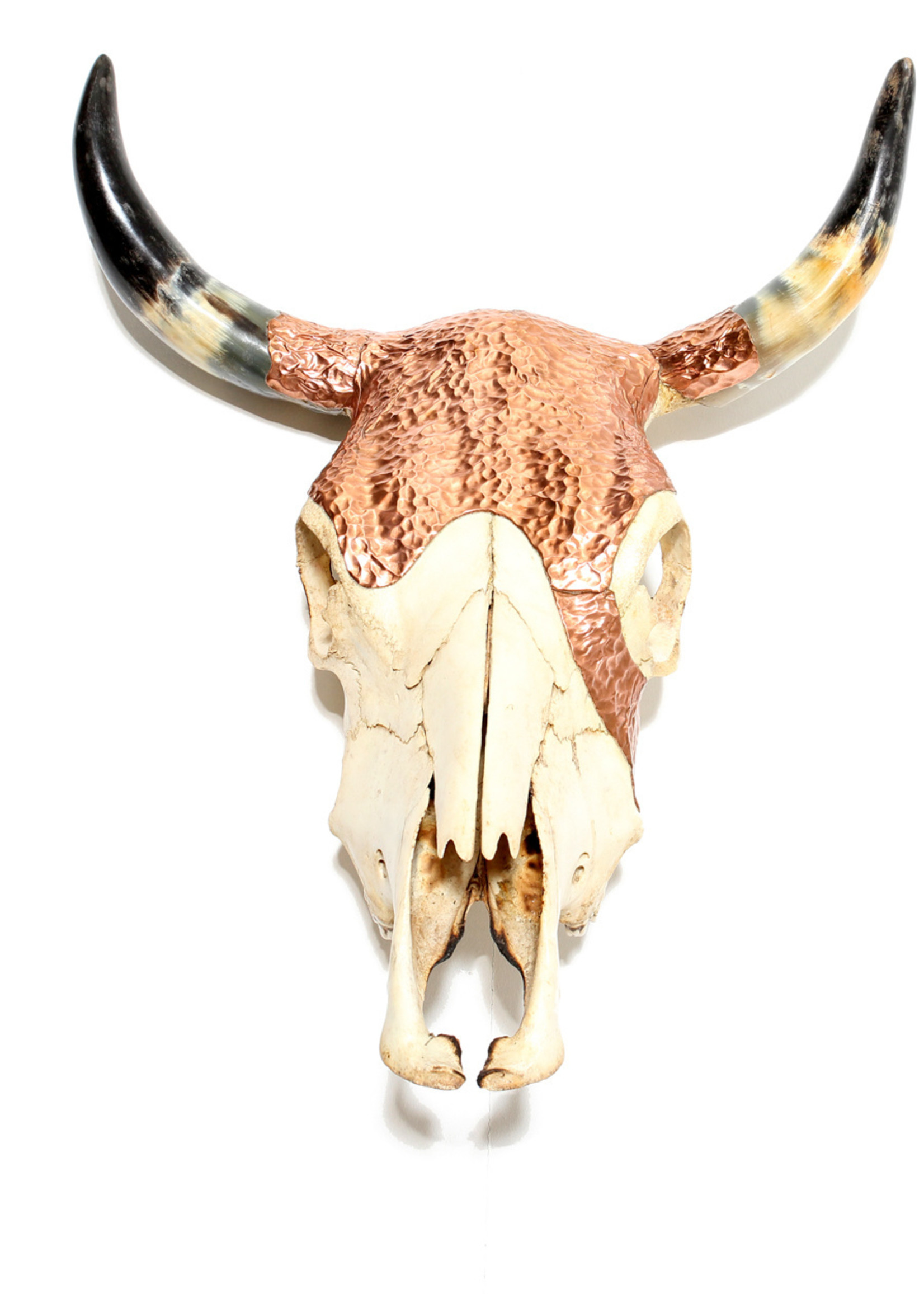 The Copper Skull