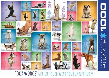 Eurographics Yoga Dogs