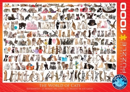Eurographics The World of Cats