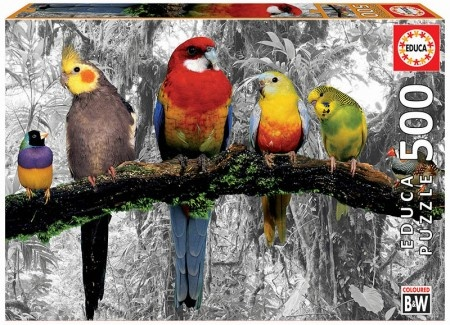 Educa Birds on the Jungle