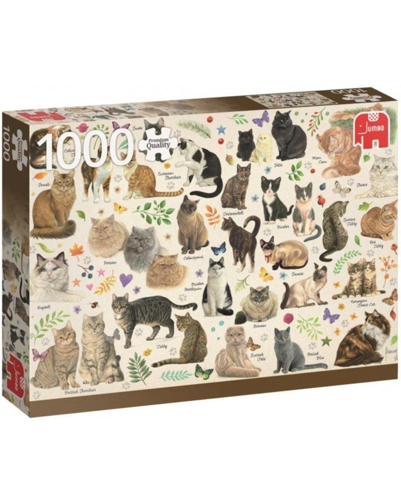 Jumbo Cats - 1000 stukjes