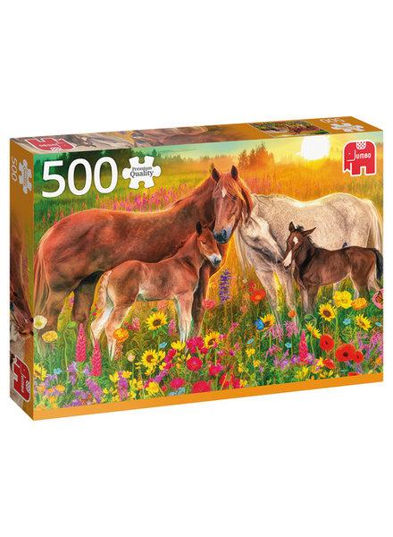 Jumbo Paarden in de wei - 500 stukjes