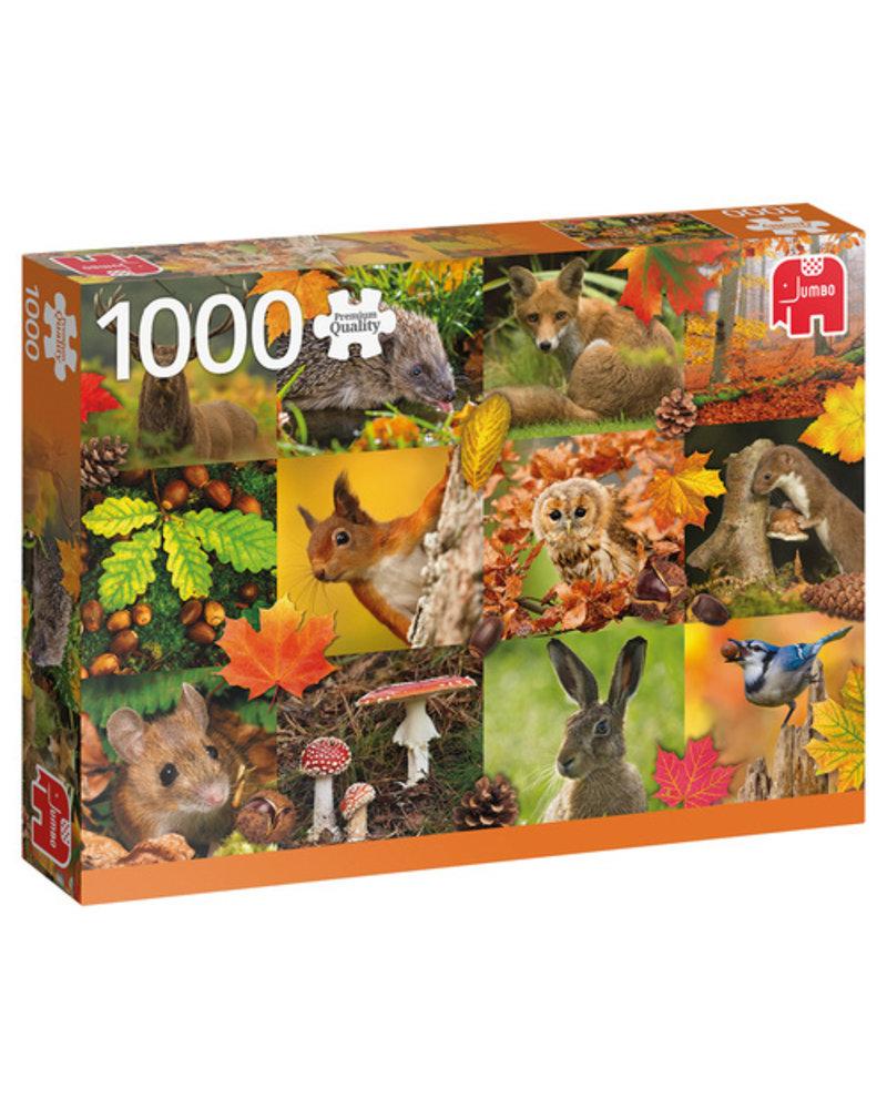 Jumbo Herfst - 1000 stukjes