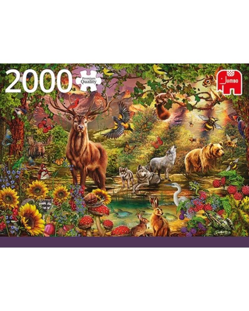Jumbo Magic forest at sunset - 2000 stukjes