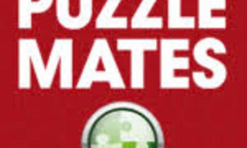 Jumbo Puzzle Mates