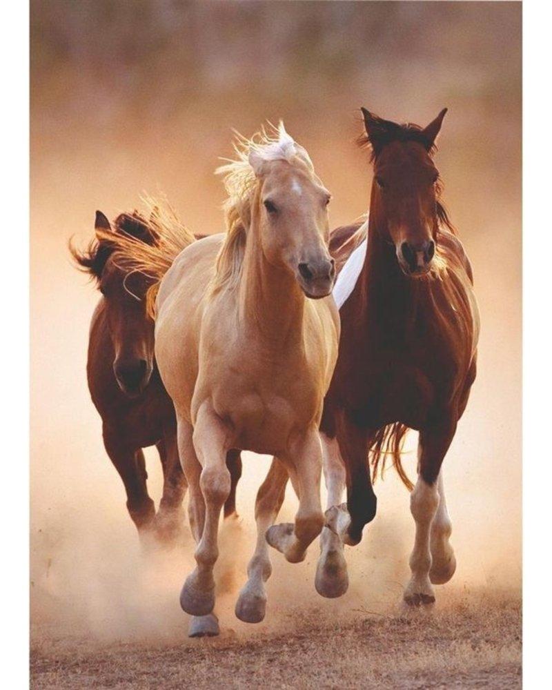 Clementoni Puzzel High Quality 1000 stukjes Rennende paarden