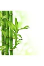 DeOliebaron  Bamboe Massage Olie 500 ml