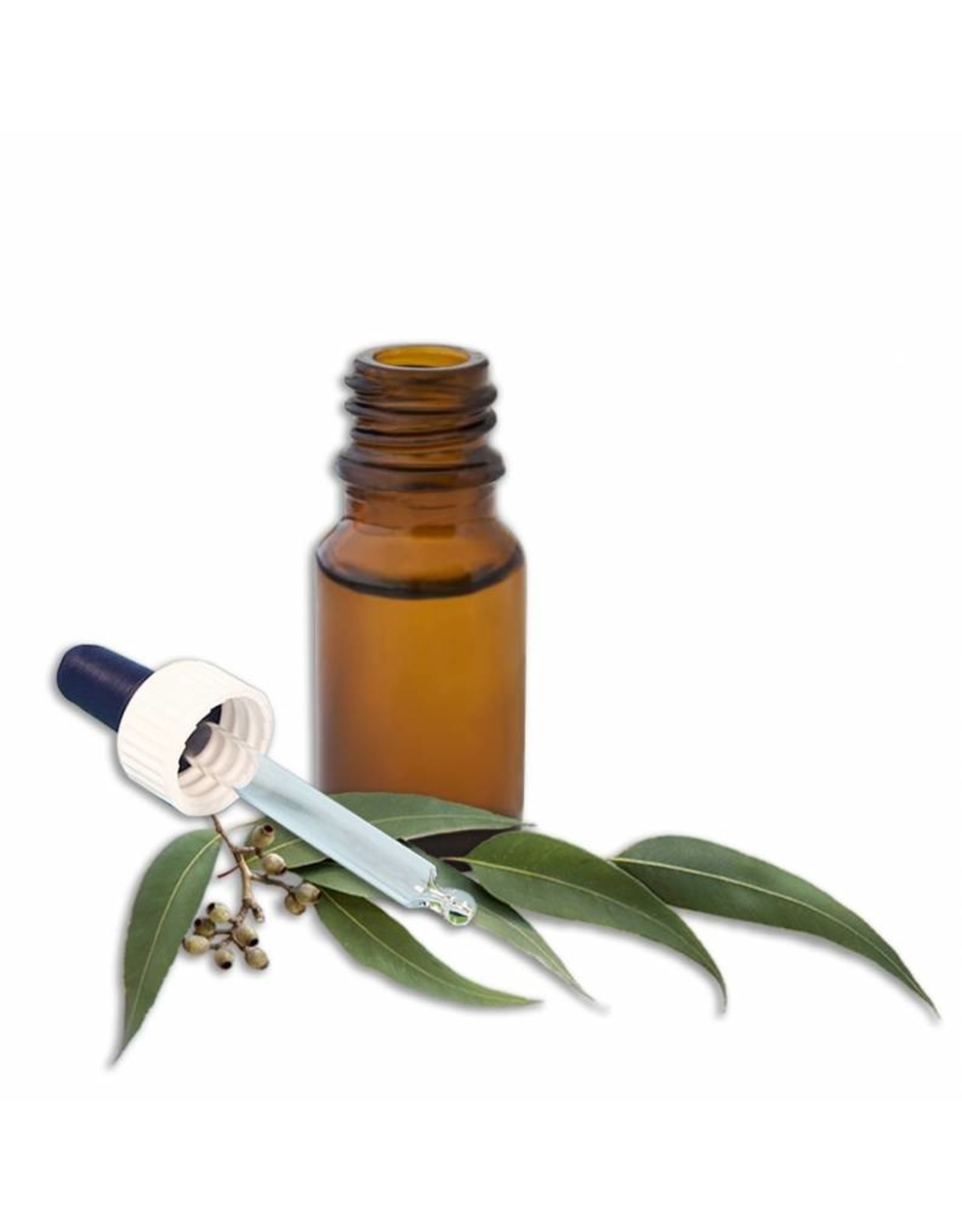 DeOliebaron  Etherische olie Eucalyptus 20 ml