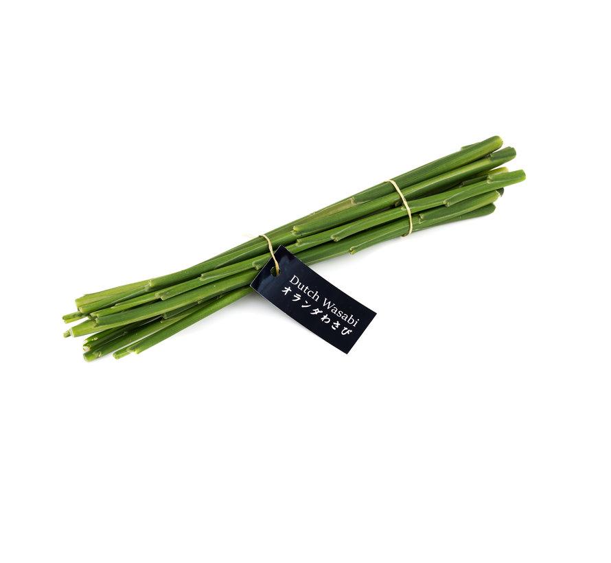 10 fresh ginger stems of ~ 30 cm
