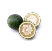Dutch Wasabi Green yuzu