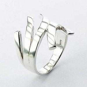 Speciale ring van zilver