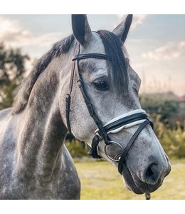 Harry's Horse Bridle Delicate