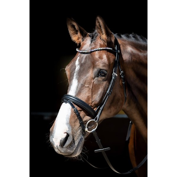 Harry's Horse Hoofdstel Fiesta