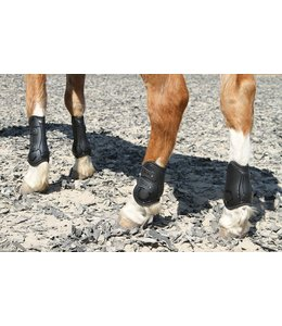 Harry's Horse Tendon boots Percy air