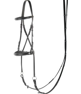 Harry's Horse Bridle Bitless Crossed over the jaw