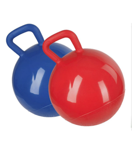 HB Ruitersport Play ball