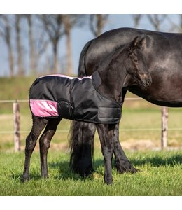 Harry's Horse Foal rug TwoTone