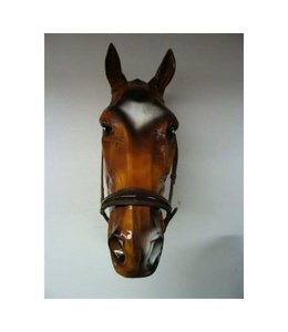 HB Ruitersport Training noseband with lacquer