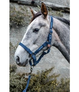 Harcour Fiction Halter and lunge