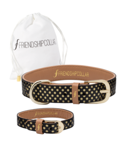 Friendship Collar The Dotty About You