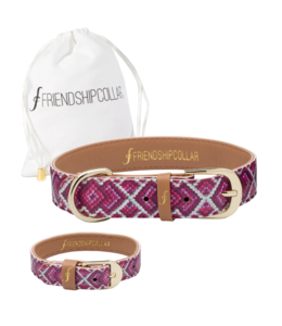 Friendship Collar The Pedigree Princess