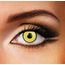 Funky Cosmetic DAILY CRAZY MAD Hatter eye accessories