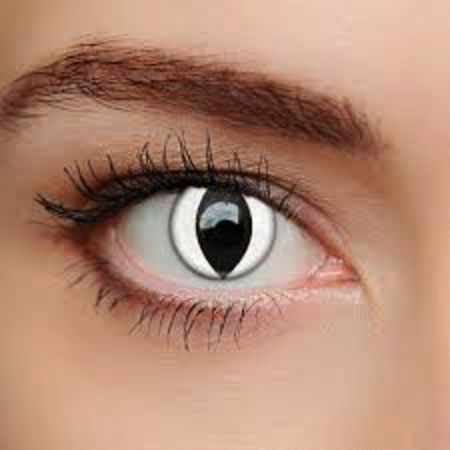 Funky Cosmetic DAILY CRAZY - White Cat eye accessories