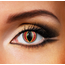 Funky Cosmetic SAURON Eye accessories DAILY