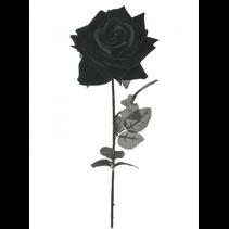 SILK SINGLE VELVET OPEN ROSE BLACK