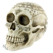 Astrological Skull 20cm
