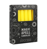 SPELL CANDLES SUCCESS PACK OF 12 YELLOW