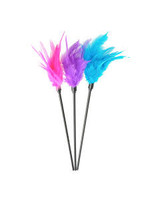 Feather Ticklers  24x1