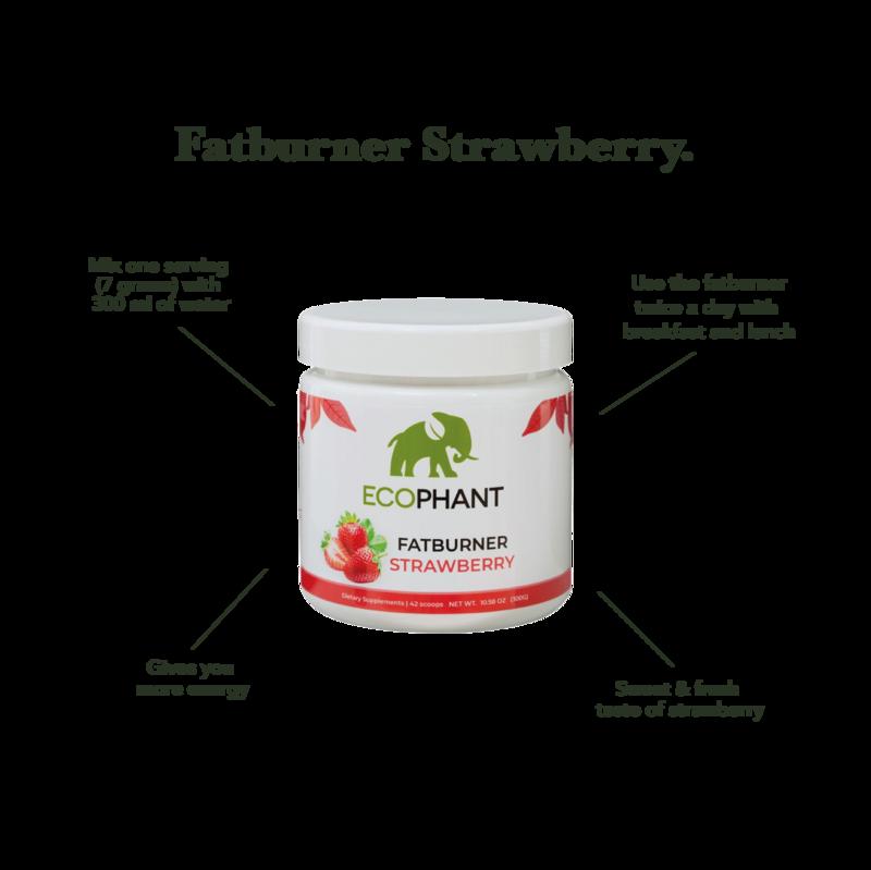 Ecophant Summerbody Combi Bundle + gratis shakebeker 700ml