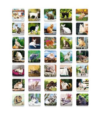 Ludattica Ludattica Memospel Katten 40 dlg 3+
