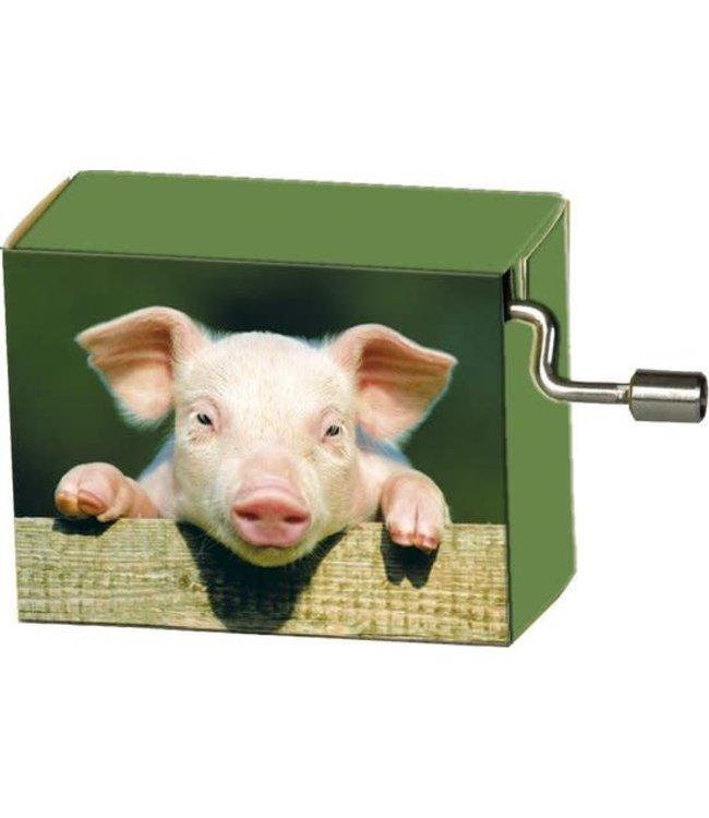 Fridolin Art & Music Muziekmechaniek Pig on Fence Happy Birthday