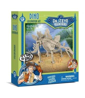 Dino Excavation Kit Stegosaurus Skeleton 6+